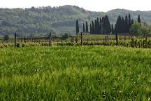Azienda Agricola Borgo San Daniele, Cormons, Italy