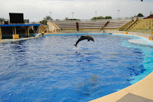 Marineland Dolphin Adventure, Marineland, United States