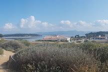 Ile du Gaou, Six-Fours-les-Plages, France
