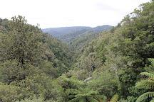Mount Damper Falls, Stratford, New Zealand
