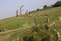 P. K. Das's Driftwood Museum & Park, Bhagalpur, India