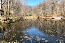 Hidden Pond Nature Center, Springfield, United States
