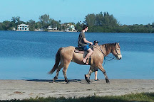 The Real BeachHorses, Bradenton, United States