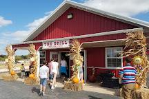 Orr Family Farm, Oklahoma City, United States
