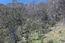 Yarrangobilly Caves, New South Wales, Australia