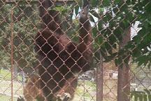 East Coast Exotic Animal Rescue, Fairfield, United States