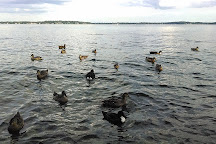 Lake Monona Shoreline Run, Madison, United States