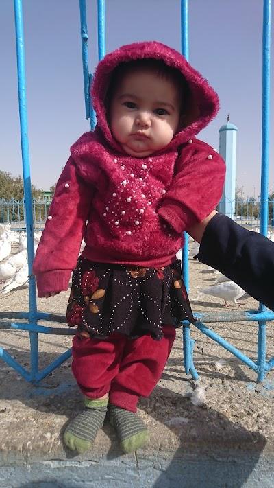Shahin Park- پارک شاهین