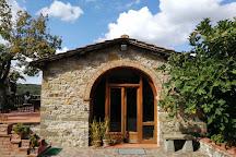 Fattoria Montagliari, Panzano in Chianti, Italy