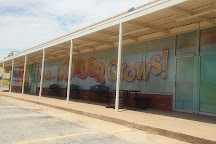 Oklahoma Wondertorium, Stillwater, United States