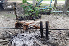 Rommanee Hot Spring