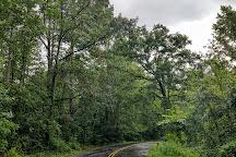 Walter B Jacobs Memorial Nature Park, Shreveport, United States