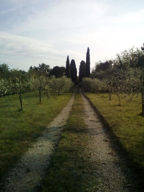 Casa famiglia per anziani non vedenti Villa Masieri