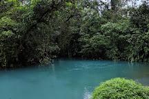 Cano Negro Wildlife Refuge, Cano Negro, Costa Rica
