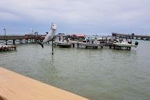 Pirate's Landing Fishing Pier, Port Isabel, United States