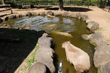 Saitama Children Zoo, Higashimatsuyama, Japan