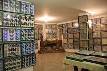 Entomological Museum of Volos, Volos, Greece