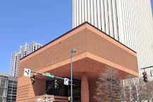 Bechtler Museum of Modern Art, Charlotte, United States