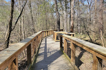Congaree National Park, Hopkins, United States