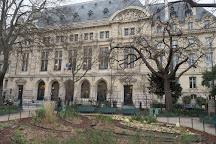 Square Paul-Painleve, Paris, France