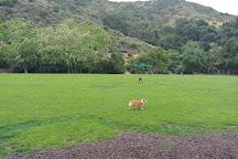 Laguna Beach Dog Park, Laguna Beach, United States