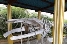 Washington-Slagbaai National Park Visitor Center Museum, Washington-Slagbaai National Park, Bonaire