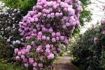 Borde Hill Garden, Haywards Heath, United Kingdom