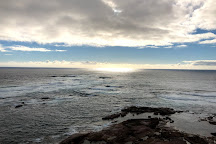 Point Labatt, Streaky Bay, Australia