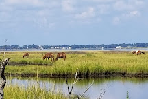 Assateague State Park, Berlin, United States