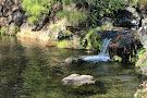 Saitama Prefecture Omiya Park
