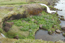 Urridafoss Waterfall, Villingaholt, Iceland