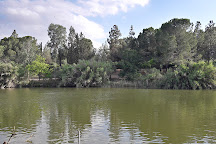 Athalassa National Park, Nicosia, Cyprus