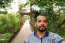 Dona Benta Suspension Bridge, Pirenopolis, Brazil