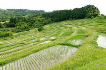 Oyama Rice Terrace, Kamogawa, Japan