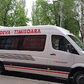 Bus Station  Timisoara Bus Station