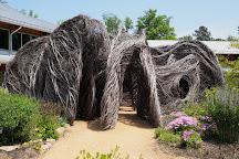 North Carolina Botanical Garden, Chapel Hill, United States