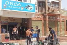 Orca Dive Dahab, Dahab, Egypt