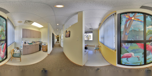 Peachtree Kids Dental | Toronto Google Business View