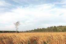 Rice Creek Conservation Area, Palatka, United States
