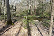 Adkins Arboretum, Ridgely, United States