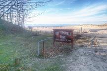 Buttersville Park, Ludington, United States