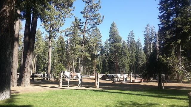 Camp Richardson