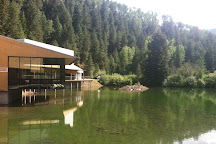 Aspen Music Festival and School, Aspen, United States