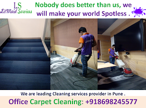 Litmaid - Professional Home & Office Cleaning Services | Painting | Home Renovation