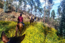 Country Riding Centre, Silves, Portugal