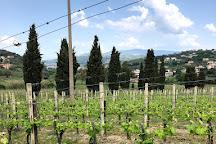 Azienda Agricola Marino, Agropoli, Italy