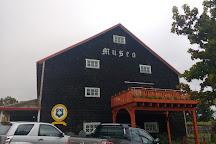 Museo Antonio Felmer, Puerto Varas, Chile