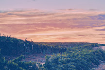 Grapeline Wine Tours, Temecula, United States