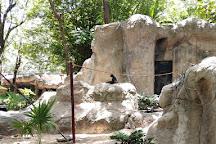 Zoologico Payo Obispo, Chetumal, Mexico