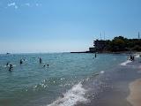 Собачий пляж в Одессе
